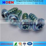 Stainless Steel Thread Forming Screw for Plastics Torx Drive Plastite Screw
