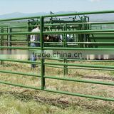 Australia standard portable and permanent cheap cattle panels for sale, cattle yards panels, used corral panels (ISO9001)