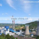 Coal Fired Biomass Fired CFB boiler circulation fluidized bed boiler power plant steam boiler