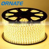 Beautiful Design High Voltage Flexible Led Strip
