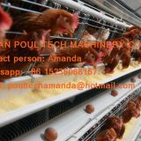Barbados Chicken Farming Automatic Egg Chicken Cage & Layer Chicken Cage with 90-200 birds in Chicken Shed