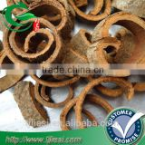 supply cassia with low price