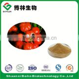 High Quality Natural Guarana Extract Powder