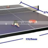 Table Tennis Top PingPong Net Paddles Balls Carry Case Portable Wood Game Chess