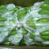 export quality banana - g9 green banana
