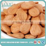 2016 new crop top raw apricot seeds kernels, sweet apricot kernels, debittered apricot kernels use for filling or chocolate