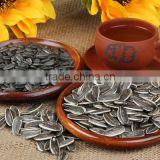 Chinese organic sunflower seeds 5009 in shell