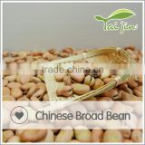 Halal Approved Competitive Broad Bean
