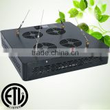 High Quality Hydroponics Equipment 1000W LED Grow Lights 240*5W Chip Full Spectrum Grow Light Growth/Bloom Switches Vertical