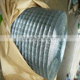 low price welded wire mesh/ galvanized welded wire mesh/ PVC coated wire mesh fence supplie