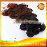 Unprocessed Ombre Hair Extensions T#1B/#4 Body Wave Ombre Brazilian Virgin Remy Hair Weave