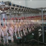 chicken slaughter machine/halal chicken/food processing machine/plucker/abattoir machine