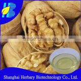 Bulk Natural Pure Edible Walnut Oil