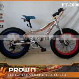 2015 full suspension fat tire mountain bike (PW-FT20005)