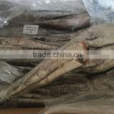 frozen hake HGT frozen fish for sale