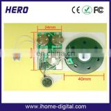 Light sensor recordable sound module for plush toy