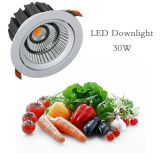 LED Fresh Downlight for Meat Vegetable food display lighting