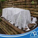 Custom Size Eco-friendly PP Non-woven Greenhouse with SGS