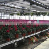 optimise conditions greenhouse rolling benches