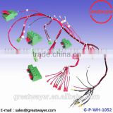 UL 3239 18AWG 200 Degree 3000 Voltage 3.81 Pitch Terminal Block Wire Harness