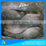 Frozen whole cleaned tilapia