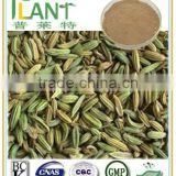 100% Natural Fennel fruit seed extract powder