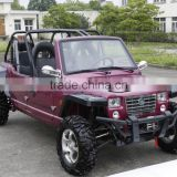 Inquiry about 1100cc 4X4 4-seater UTV