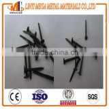 Blue shoe tack nails from china factory
