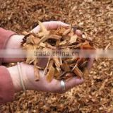 WOOD CHIPS 100% WOOD( ACACIA, EUCALYPTUS, PINE, RUBBER) BULK AND CHEAP PRICE