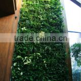 2015newest fatory price artificial grass wall,indoor or outdoor,vertical green wall