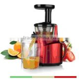 Low Speed Low Noise Slow Juicer With 150W DC Motor