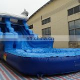 Top quality Ocean theme inflatable water slide with pool