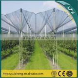 Guangzhou Hail Protection Net/ Apple Trees Protection Anti-hail Net/ Plastic Net