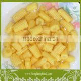 Fresh canned cut baby corn
