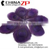 CHINAZP Bulk Sale Selected Prime Quality Dyed Eggplant Trimmed Peacock Feathers Eyes for Decoration