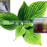 4:1 Brown Powder Herb Menthae Extract Menthol Crystal