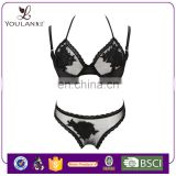 2016 Latest Graceful Young Women Super Lovely Girl Bra Panty Set