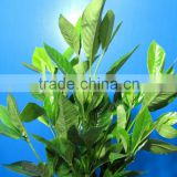 Elegant in smell classical 2015 cheap fresh cut foliage flower