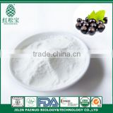 GMP Manufacturer Food Grade Organic Black Currant Seed Oil Powder