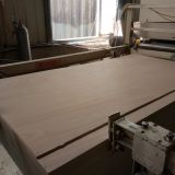 commercial plywood 18mm Okoume plywood