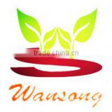 Guangzhou Wansong Plastic Co., Ltd.