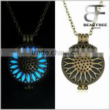 Glow in the Dark Openwork Daisy Flower Patterned Round Locket Pendant Necklace