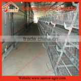 Poultry farm A type feed system for chicken cages / coop for meat broilers / broiler cage