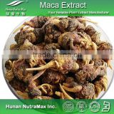 High Quality Maca Extracts/Maca Extract 20:1                                                                         Quality Choice