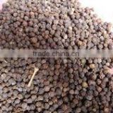 New season's bulk black pepper seeds from Africa