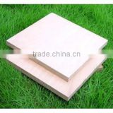 marin plywood for shipbuilding