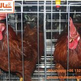 Sri Lanka Chicken Supplier in Chicken Shed Hot Galvanized Cage & A Type Battery Layer Breeder Chicken Cage & Laying Hen Coop for Poultry Farm