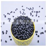 china dried black kidney beans