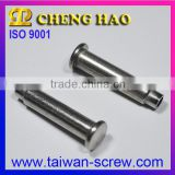 Special Fastener stainless steel pop rivet