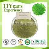 China Supplier 100% pure nature private label Free sample Low price leaf moringa powder